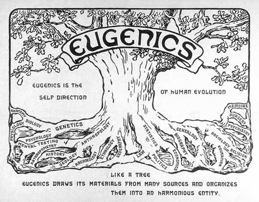 Eugenics_tree_logo2_2